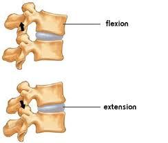 flexion gwadayoga